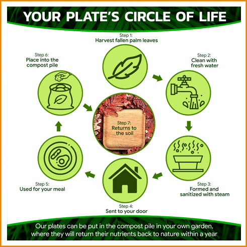 Your Plate's Circle Of Life